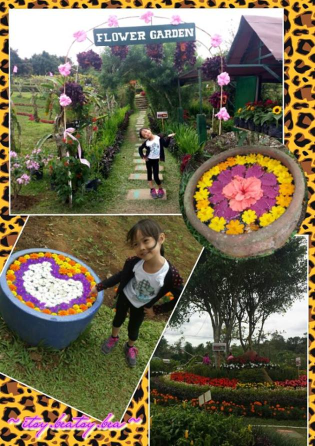 Ricci and the Secret Garden